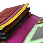 Multi Colour Women's Leather Wallet-ST 2025 inside